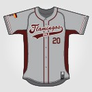 Flamingos Jersey Grey mit Tackle-Twill 2